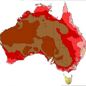 Canicule extrême en Australie : près de 50°C !