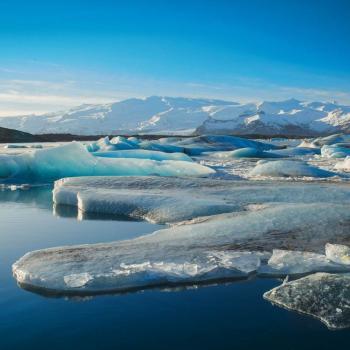 Banquise Arctique : petite amélioration en Novembre
